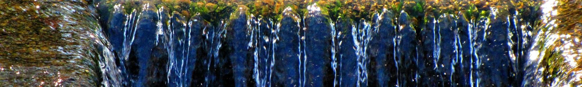 Immagine rappresentativa dei rifiuti
